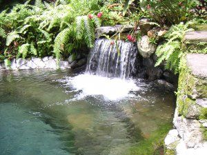 hidden valley springs, hidden valley laguna, -- Tour Packages Paranaque, Philippines