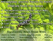 serrapeptase bilinamurato serrapeptase doctors best serrazimes serrapeptase, -- Natural & Herbal Medicine -- Metro Manila, Philippines