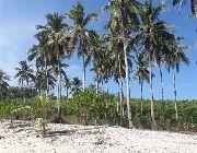 Beach, Culion, Palawan, Island, Lot, White Sand -- Beach & Resort -- Palawan, Philippines
