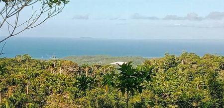 Overlooking, Lot, Ocean View, San Vicente, Port Barton, Palawan -- Land Palawan, Philippines