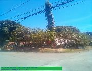 Moonwalk Village Corner Lot -- Land -- Las Pinas, Philippines