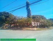Moonwalk Subd Las Pinas Corner Lot -- Land -- Las Pinas, Philippines