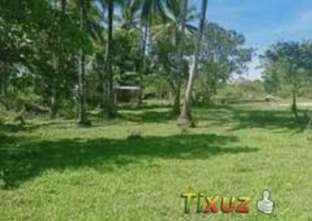 1.8 Hectares For Sale in Bagumbayan Taguig City -- Land Taguig, Philippines